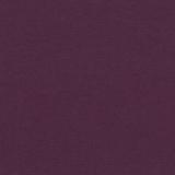 Carnival-Purple