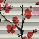 Cherry-Blossom-Geisha-Plt