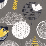 Birdsong-Midnight