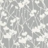 Meadow-Dove