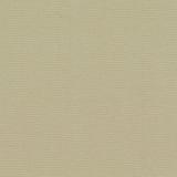 Basix-Parchment