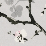 Cherry-Blossom-Serenity