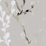 Willow-Birch-White